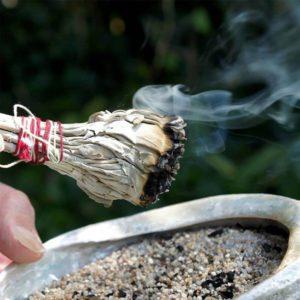 sauge-blanche-de-californie-nettoyage-purification-de-la-maison-shiva-esoterisme-belgique-lithotherapie-et-mineraux